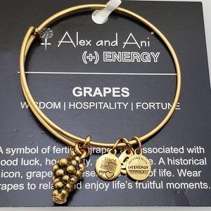 NWT Alex and Ani grapes bangle bracelet retired